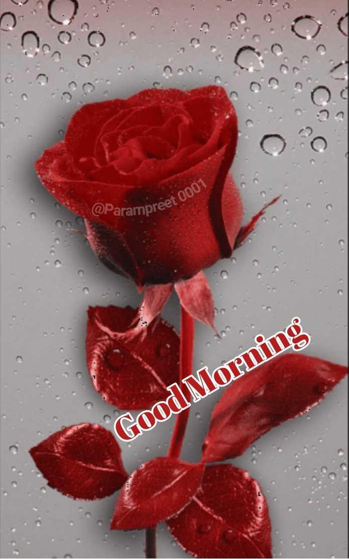 🌅 ਗੁੱਡ ਮੋਰਨਿੰਗ - @ Parampreet Preet 0001 Good Morning - ShareChat