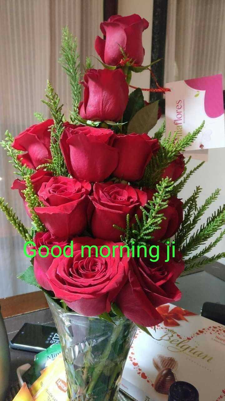 🌅 ਗੁੱਡ ਮੋਰਨਿੰਗ - iraflores Good morning ji - ShareChat