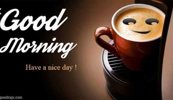 🌅 ਗੁੱਡ ਮੋਰਨਿੰਗ - Good Morning Have a nice day ! greetings . com - ShareChat