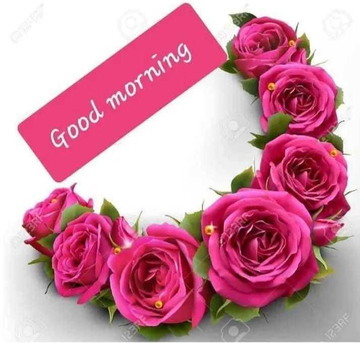 🌅 ਗੁੱਡ ਮੋਰਨਿੰਗ - Good morning Deno BE21 - ShareChat
