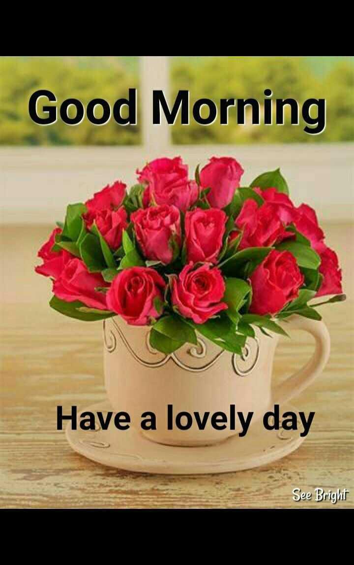 🌅 ਗੁੱਡ ਮੋਰਨਿੰਗ - Good Morning Have a lovely day See Bright - ShareChat