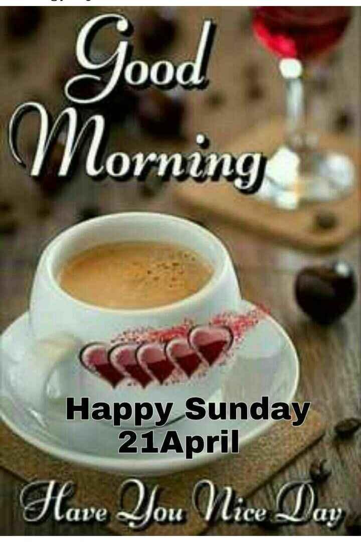 🌅 ਗੁੱਡ ਮੋਰਨਿੰਗ - Good Norning Happy Sunday 21April Have You Nice Day - ShareChat