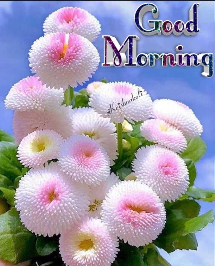 🌅 ਗੁੱਡ ਮੋਰਨਿੰਗ - Good Morning - Krishnakoli - ShareChat