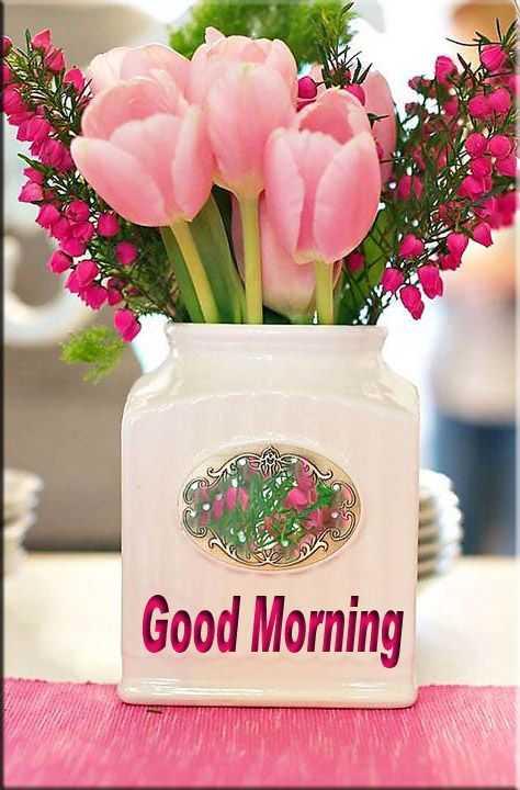 🌅 ਗੁੱਡ ਮੋਰਨਿੰਗ - Ke Good Morning - ShareChat