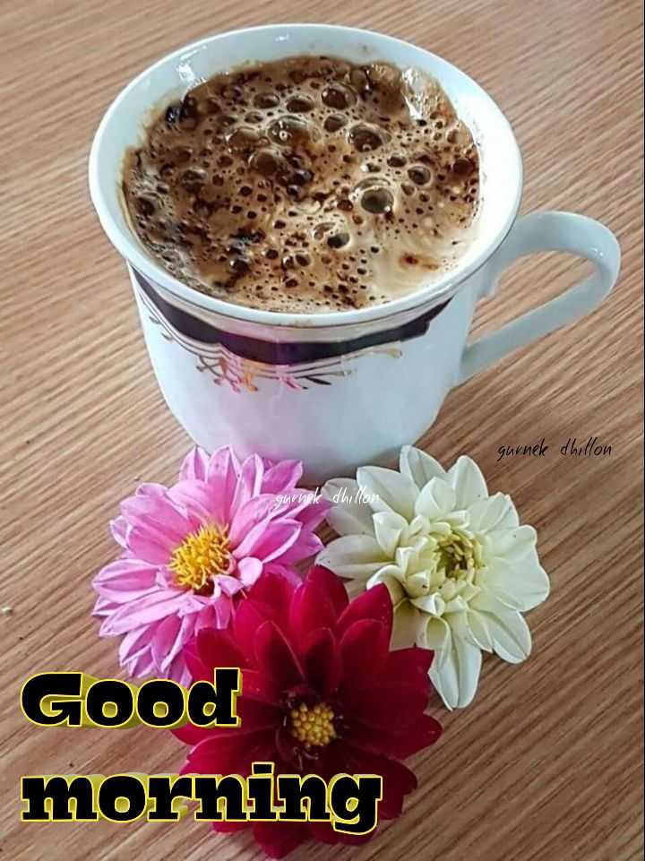 🌅 ਗੁੱਡ ਮੋਰਨਿੰਗ - gurnek dhillon gunek dhillon Good morning - ShareChat