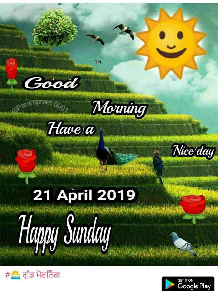 🌅 ਗੁੱਡ ਮੋਰਨਿੰਗ - Coreet 0007 aparampras Good Morning Have a Nice day 21 April 2019 Happy Sunday # ds Haládi GET IT ON Google Play - ShareChat