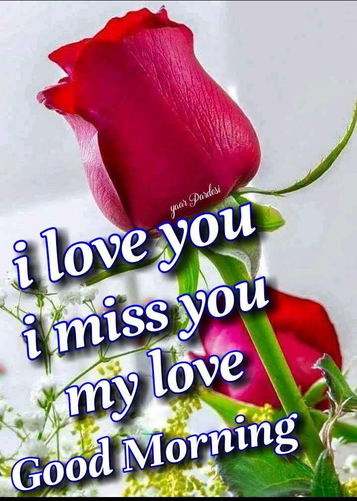 🌅 ਗੁੱਡ ਮੋਰਨਿੰਗ - yaar Pardesi i love you i miss you my love Good Morning - ShareChat