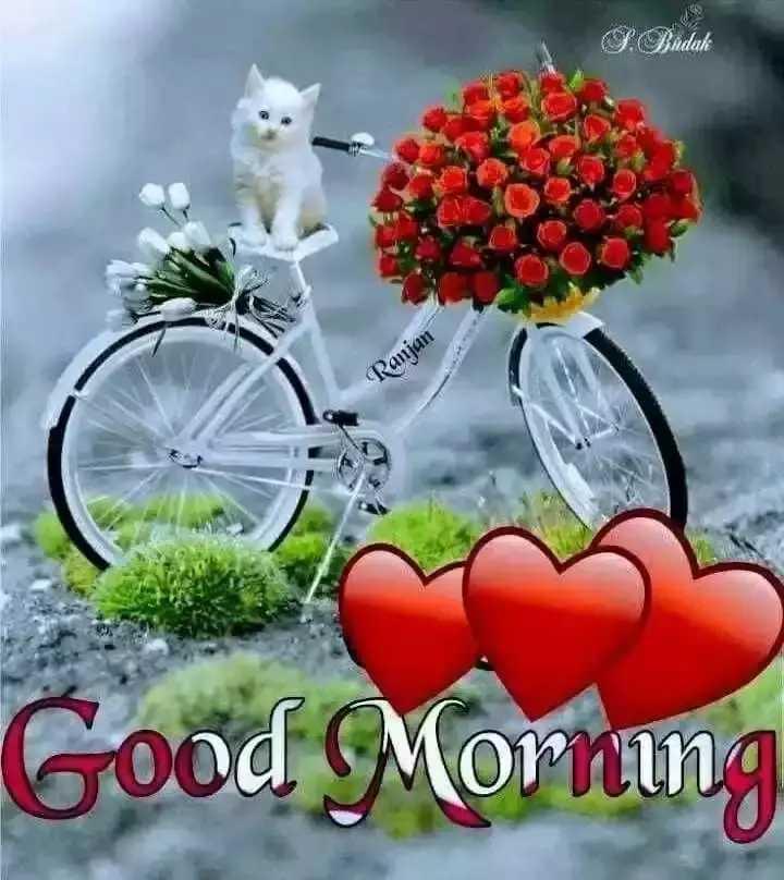 🌅 ਗੁੱਡ ਮੋਰਨਿੰਗ - S . Bindak Ranjan Good Morning - ShareChat