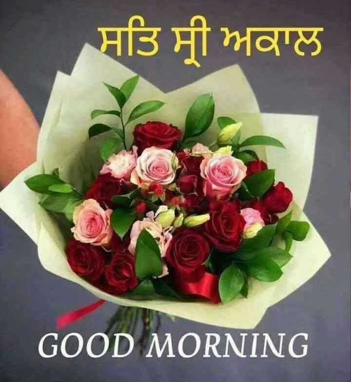 🌅 ਗੁੱਡ ਮੋਰਨਿੰਗ - | ਸਤਿ ਸ੍ਰੀ ਅਕਾਲ GOOD MORNING - ShareChat