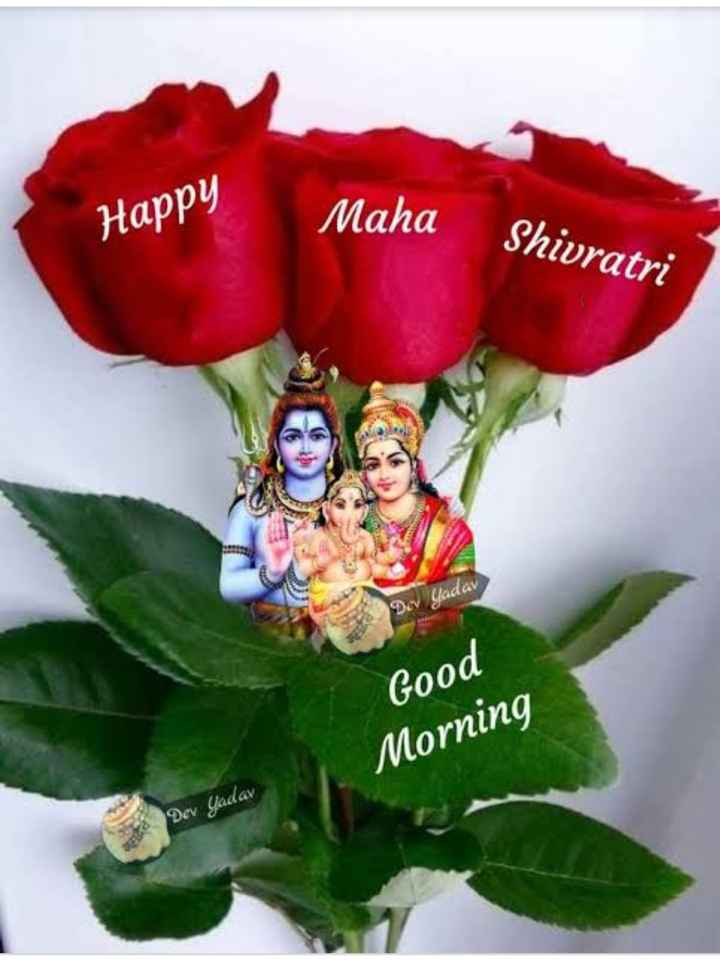 🌅 ਗੁੱਡ ਮੋਰਨਿੰਗ - Happy Maha Shivratri Dev Yadav Good Morning Dev Yadav - ShareChat