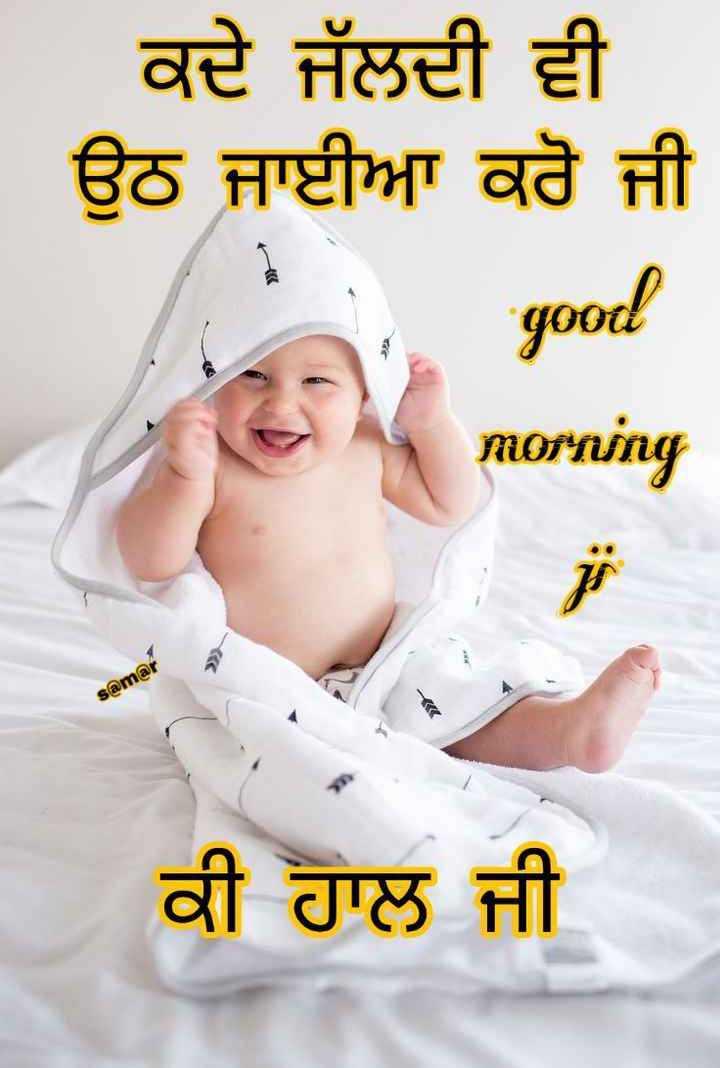 🌅 ਗੁੱਡ ਮੋਰਨਿੰਗ - | ਕਦੇ ਜੱਲਦੀ ਵੀ । ਉਠ ਜਾਈਆ ਕਰੋ ਜੀ good morning Slama ਕੀ ਹਾਲ ਜੀ - ShareChat