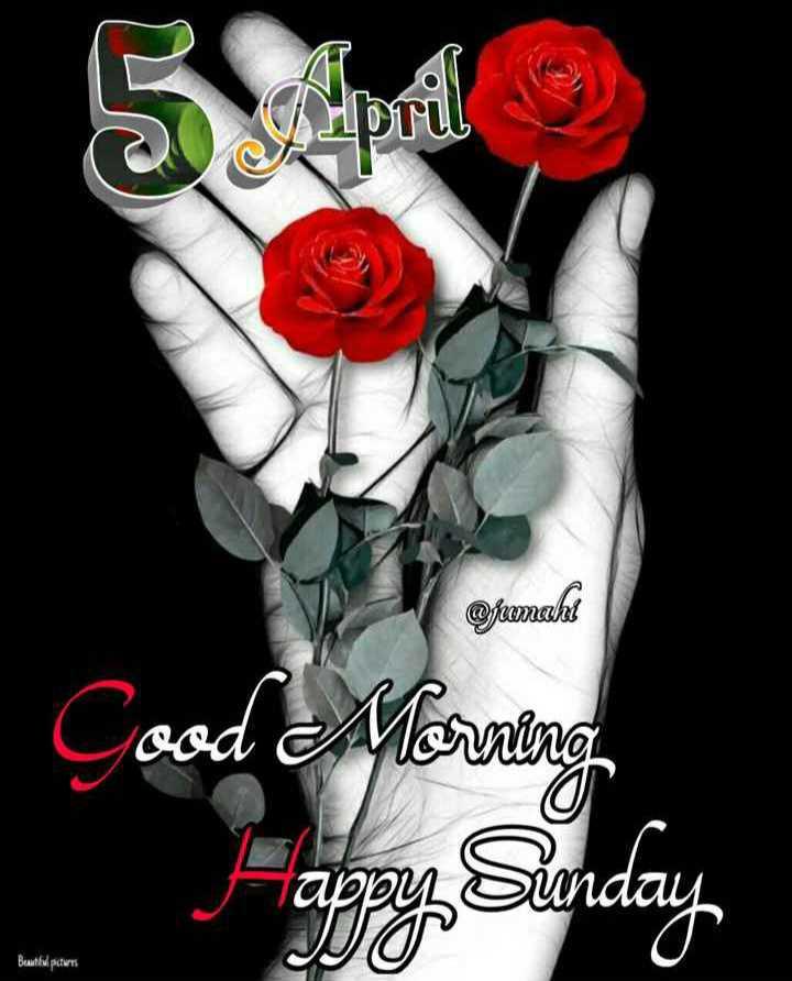 🌅 ਗੁੱਡ ਮੋਰਨਿੰਗ - 5 April @ fromaht Good Morning apy Senday Beutlul pictures - ShareChat