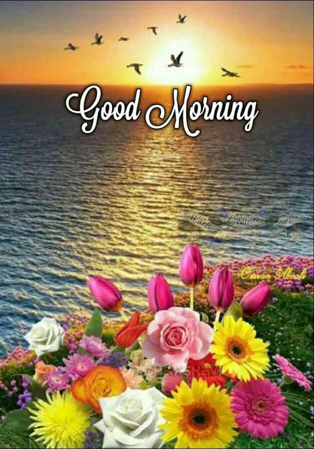🌅 ਗੁੱਡ ਮੋਰਨਿੰਗ - Good Morning Barts itions he - ShareChat
