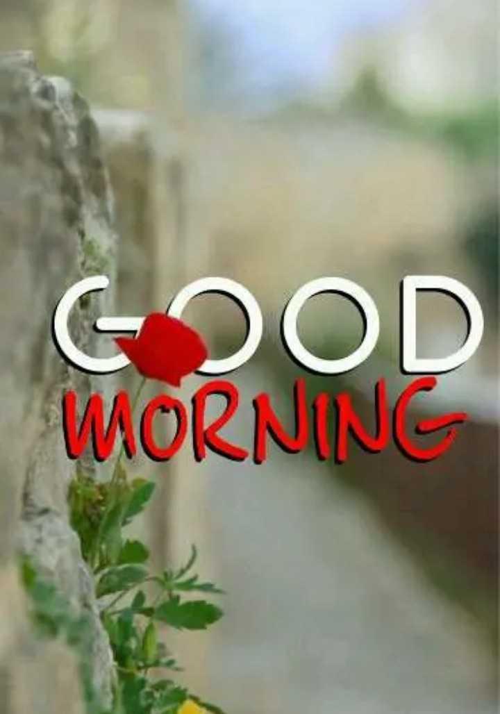 🌅 ਗੁੱਡ ਮੋਰਨਿੰਗ - 62OD MORNING - ShareChat