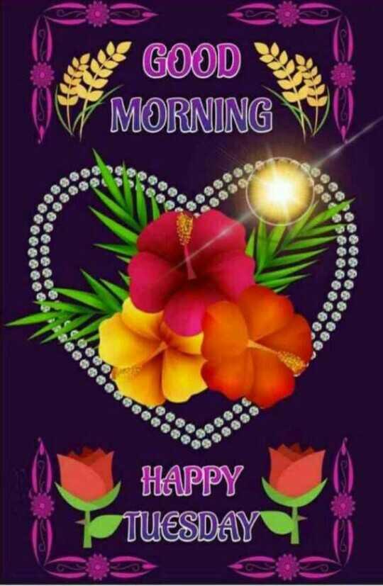 🌅 ਗੁੱਡ ਮੋਰਨਿੰਗ - E GOOD LOS MORNING VU alebo eeeeeeee . 000009 20 HAPPY TUESDAY - ShareChat