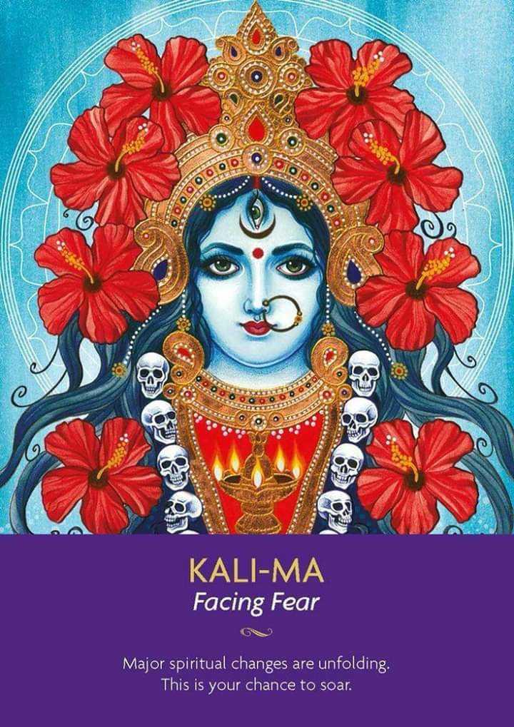 👌 ਘੈਂਟ ਵੀਡੀਓਜ - alololo KALI - MA Facing Fear Major spiritual changes are unfolding , This is your chance to soar . - ShareChat