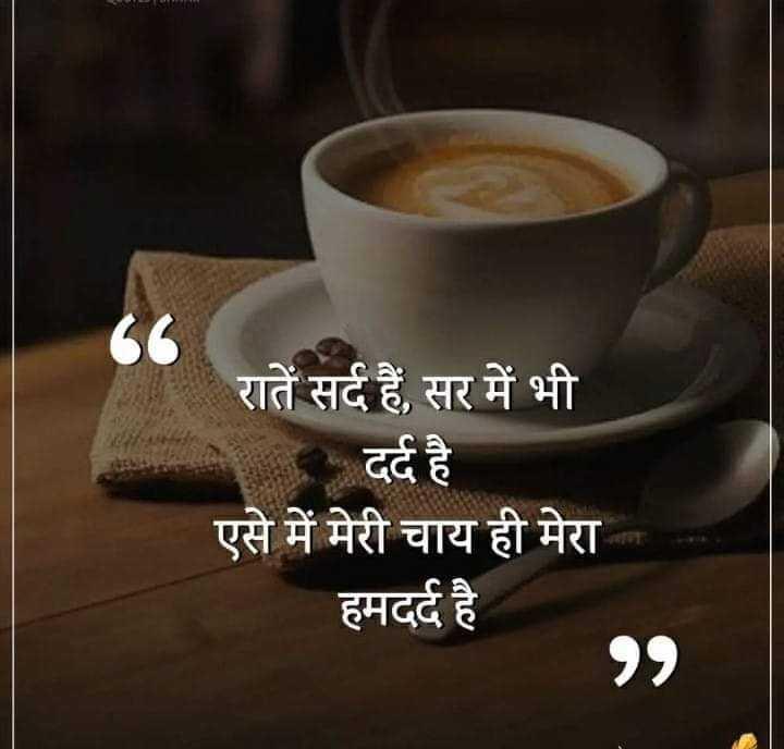 ☕ ਚਾਹ ਕਾਫ਼ੀ ਤੇ ਲੱਸੀ - रातें सर्द हैं , सर में भी _ दर्द है एसे में मेरी चाय ही मेरा हमदर्द है - ShareChat