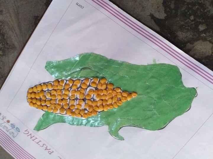 📖 ਛੁੱਟੀਆਂ ਦਾ ਕੰਮ - PASTING corn - ShareChat