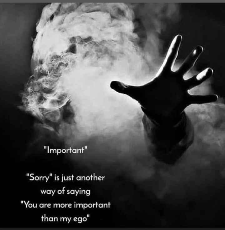 💖 ਦਿਲ ਦੇ ਜਜਬਾਤ - Important Sorry is just another way of saying You are more important than my ego - ShareChat