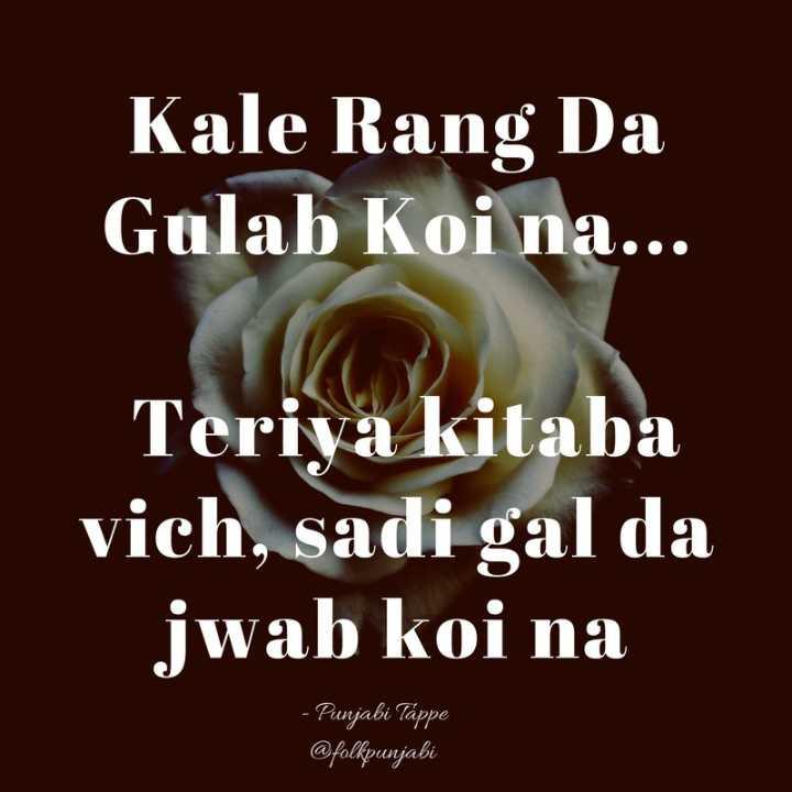 ਬੋਲੀਆਂ ਤੇ ਟੱਪੇ - Kale Rang Da Gulab Koi na . . . Teriya kitaba vich , sadi gal da jwab koi na - Punjabi Tappe @ folkpunjabi - ShareChat