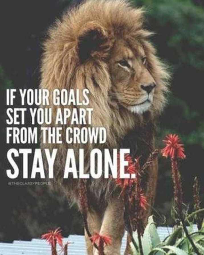 ਮੇਰਾ attitude - IF YOUR GOALS SET YOU APART FROM THE CROWD STAY ALONE . CARSVPEOPLE - ShareChat