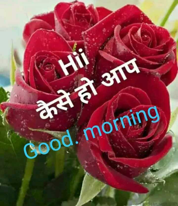 ਮੇਰੇ ਪਿੰਡ ਦੀ ਸੱਜਰੀ ਸਵੇਰ ⛅ - Hii कैसे हो आप Good . morning - ShareChat