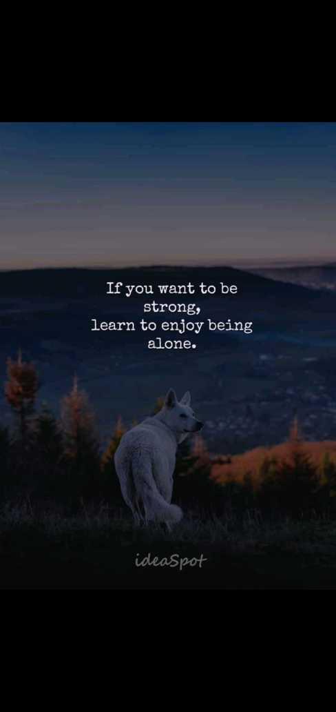 💭 ਮੇਰੇ ਵਿਚਾਰ - If you want to be strong , learn to enjoy being alone . ideaspot - ShareChat