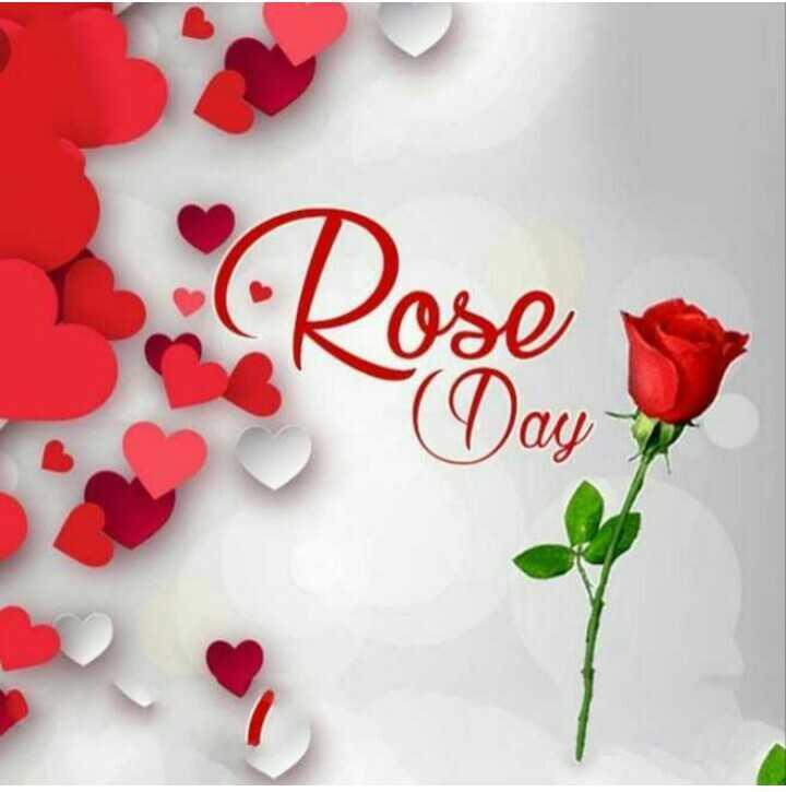 🌹 ਰਾਸ਼ਟਰੀ ਗੁਲਾਬ ਦਿਵਸ - Rose Day 1 - ShareChat