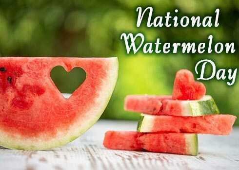 🍉 ਰਾਸ਼ਟਰੀ ਤਰਬੂਜ਼ ਦਿਵਸ - National Watermelon Day - ShareChat