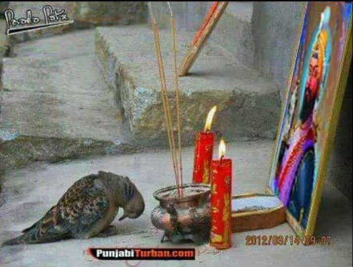 💝 ਰੋਮੈਂਟਿਕ ਤਸਵੀਰਾਂ - 2012 / 09 / 16 19 . Punjabi Turban . com - ShareChat