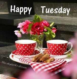 🙏ਸ਼ੁੱਭ ਮੰਗਲਵਾਰ - Happy Tuesday The skylark ' s dream - ShareChat