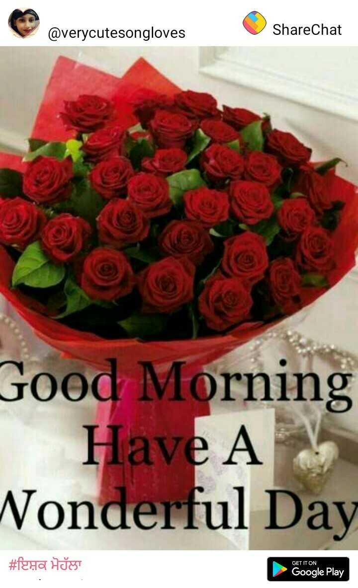 😜 ਸਿਰ ਹਿਲਾਂਦੇ ਹੋਏ ਵੀਡੀਓ - @ verycutesongloves ShareChat Good Morning Have A Nonderful Day # femra Hat GET IT ON Google Play Google Play - ShareChat