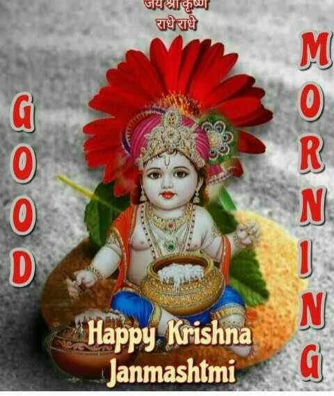🌼 ਹੈਪੀ ਕ੍ਰਿਸ਼ਨ ਜਨਮ ਅਸ਼ਟਮੀ - जयश्रीकृष्ण राधे राधे @ Os oooo Happy Krishna Janmashtmi - ShareChat