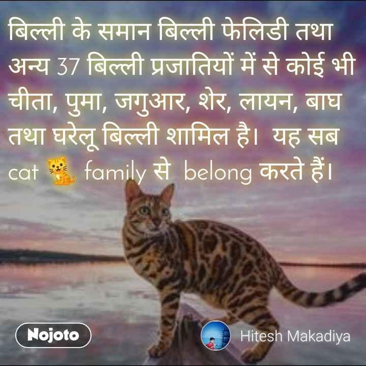 🐱 આંતરરાષ્ટ્રીય બિલાડી દિવસ - बिल्ली के समान बिल्ली फेलिडी तथा अन्य 37 बिल्ली प्रजातियों में से कोई भी चीता , पुमा , जगुआर , शेर , लायन , बाघ तथा घरेलू बिल्ली शामिल है । यह सब cat family से belong करते हैं । Nojoto Hitesh Makadiya - ShareChat