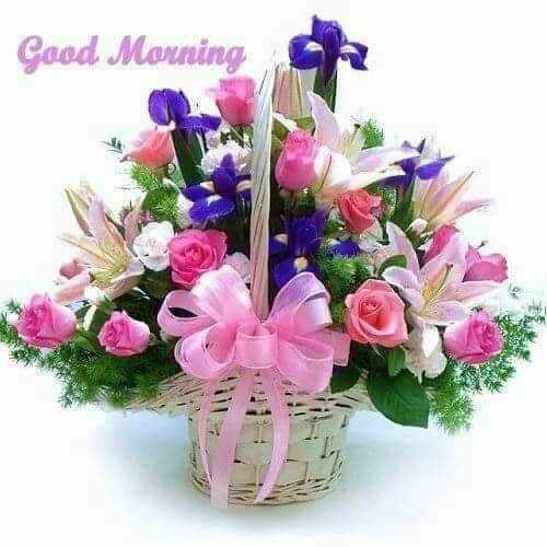 🔥 આજની ગણપતિની આરતી - Good Morning - ShareChat