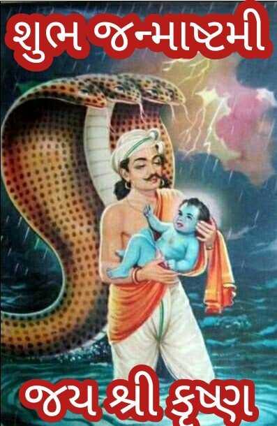 🙏 કૃષ્ણ જન્માષ્ટમી - શુભ જન્માષ્ટમી ( જય શ્રી કૃષ્ણ - ShareChat