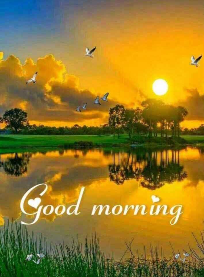 😊 ગુડ મોર્નિંગ 😊 - Good morning - ShareChat