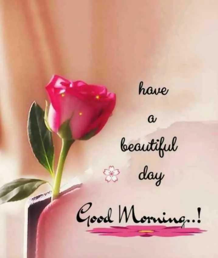 😊 ગુડ મોર્નિંગ 😊 - have beautiful 3 day Good Morning . . ! - ShareChat