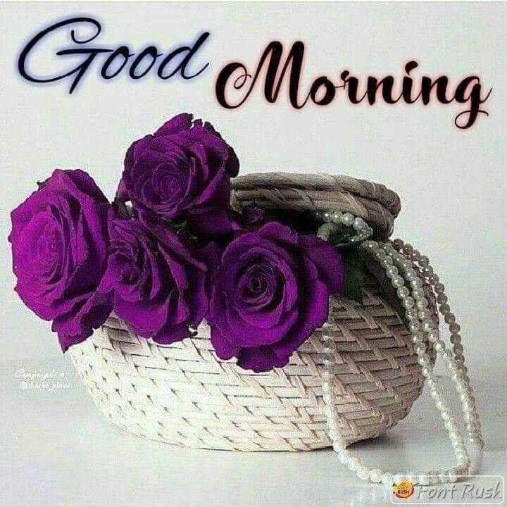ગુડ મોર્નિંગ - Good Morning Font Rush - ShareChat