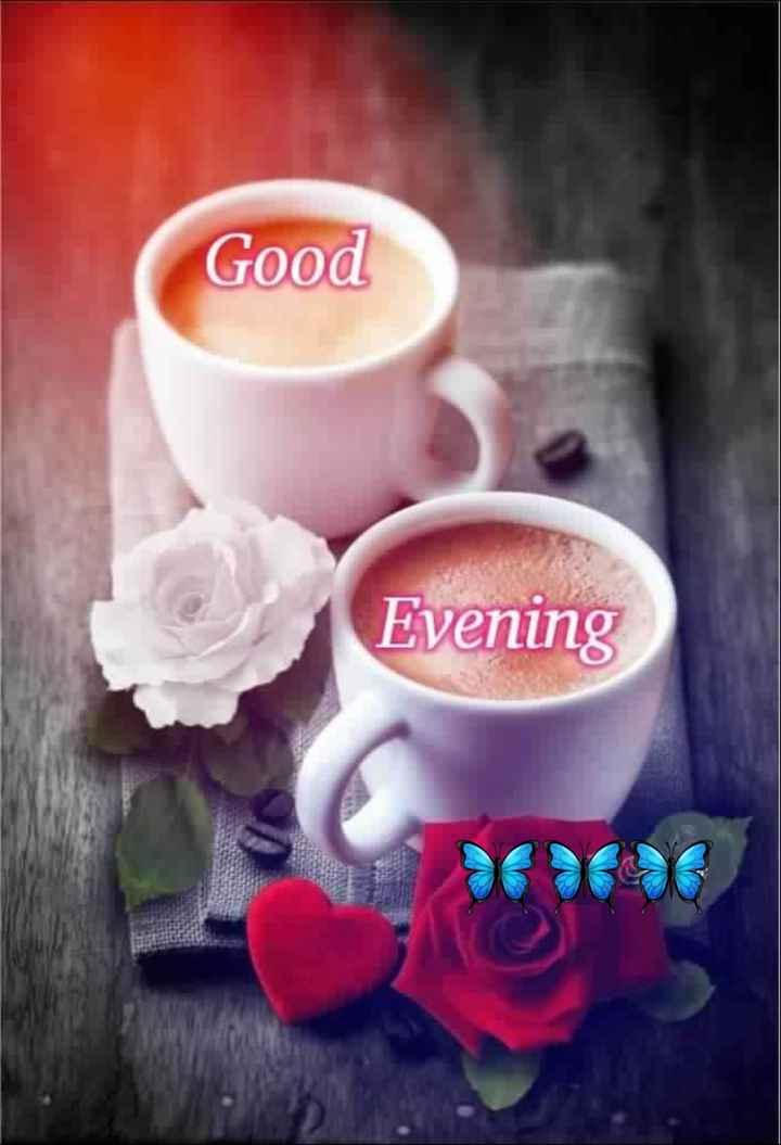 ☕ ચા - કોફી - Good Evening - ShareChat