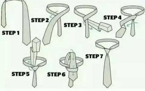 📋જનરલ નોલેજ - STEP STEP 2 STEP 3 STEP 1 STEP 7 STEP 5 STEP 6 - ShareChat