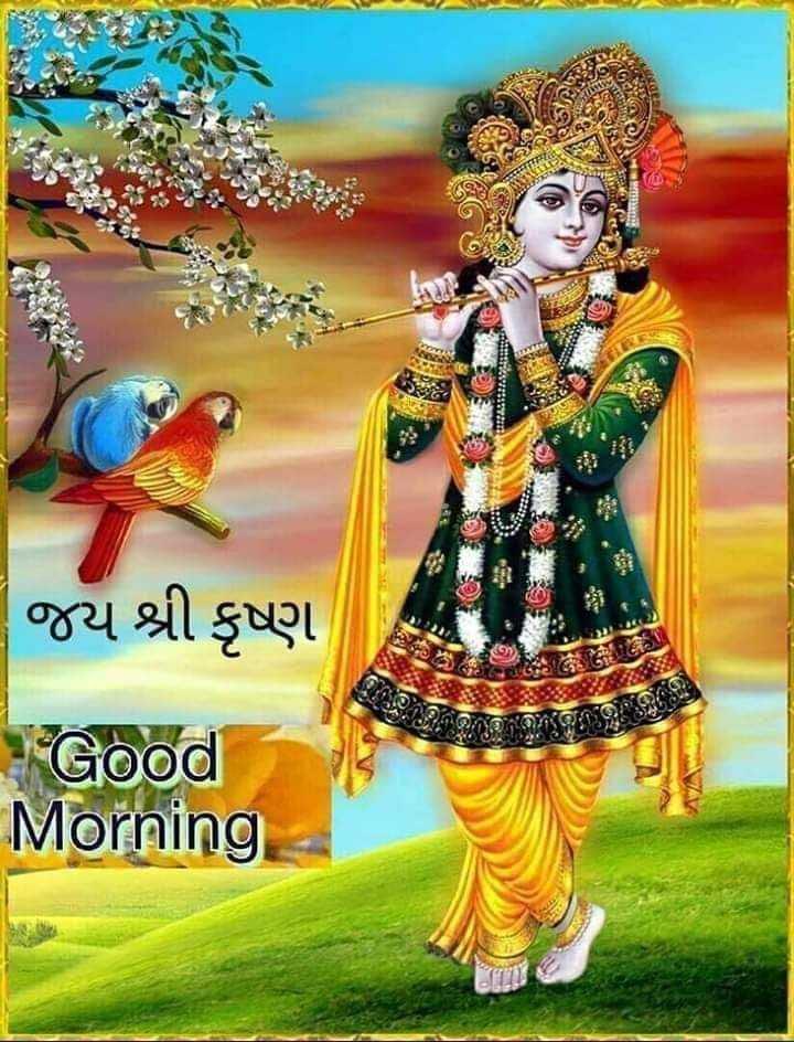 🙏 જય શ્રી કૃષ્ણ - જય શ્રી કૃષ્ણ જ . ' S is Good Morning - ShareChat