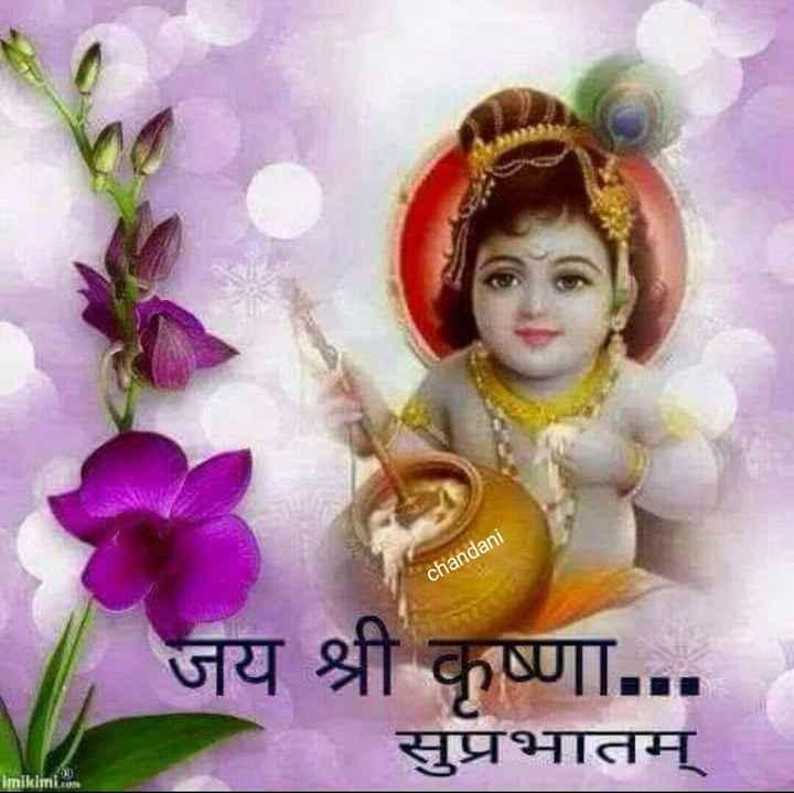 🙏 જય શ્રી કૃષ્ણ - chandani जय श्री कृष्णा . . . सुप्रभातम् imikimi . com - ShareChat