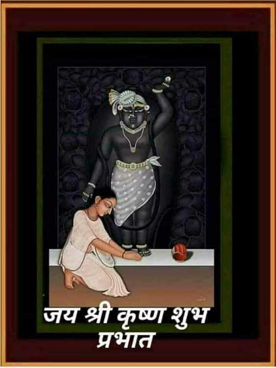 🙏 જય શ્રી કૃષ્ણ - जय श्री कृष्ण शुभ प्रभात - ShareChat