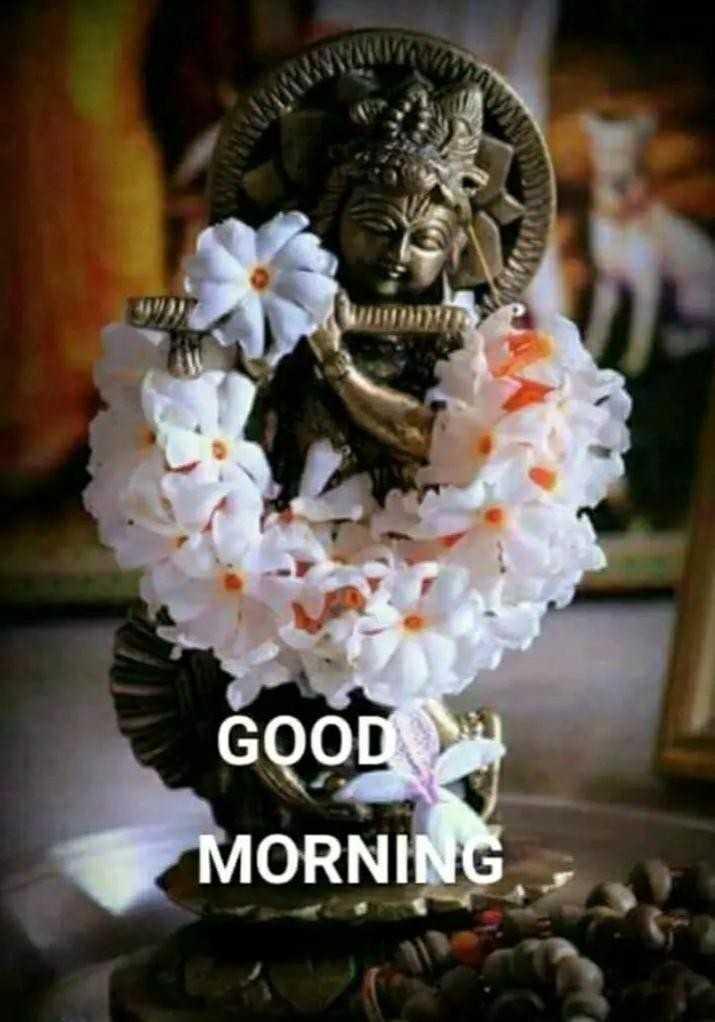 🙏 જય શ્રી કૃષ્ણ - WWWINDS GOOD MORNING - ShareChat