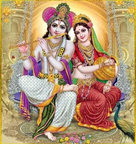 🙏 જય શ્રી કૃષ્ણ - - சப் - 00 - ShareChat