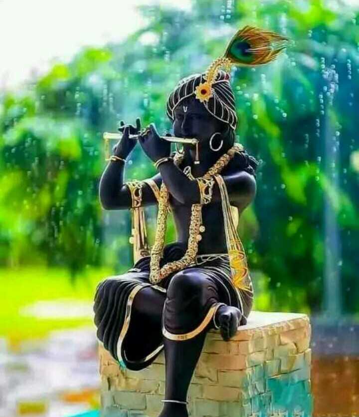જય શ્રીકૃષ્ણ - ShareChat