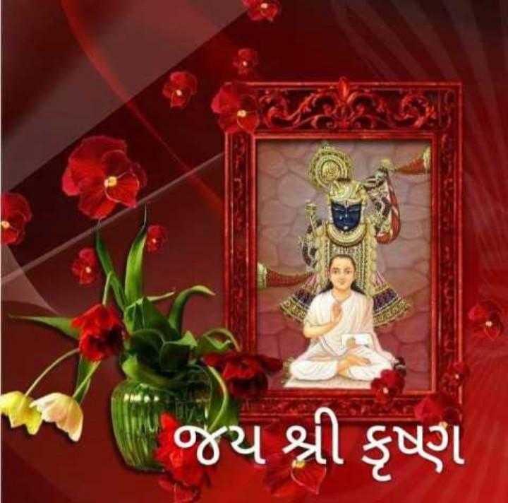 🙏 જય શ્રી કૃષ્ણ - જય શ્રી કૃષ્ણ - ShareChat