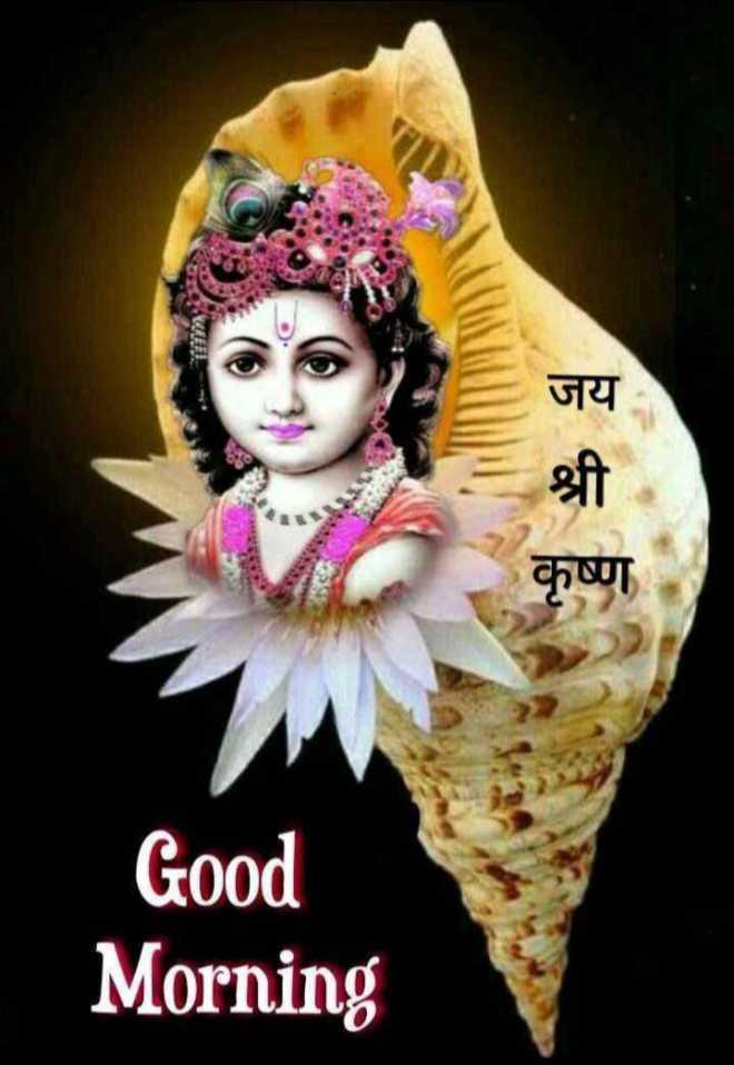 🙏 જય શ્રી કૃષ્ણ - जय कृष्ण Good Morning - ShareChat