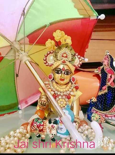 🙏 જય શ્રી કૃષ્ણ - Jai Shri Krishna - ShareChat